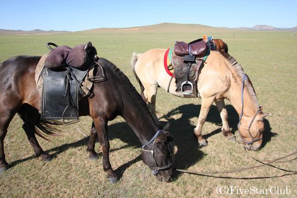 蒙古国旅行_蒙古天骄吧图片