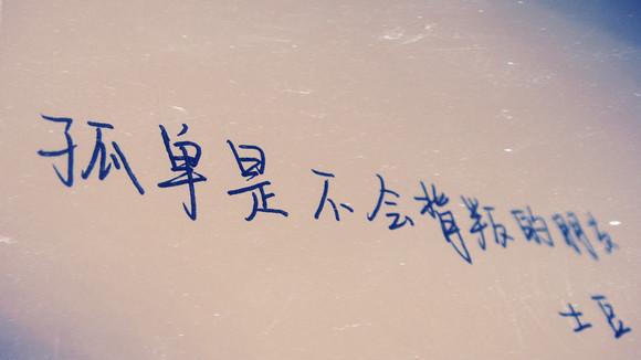 [手写:我姓李却离不开 孤独 的你]图片