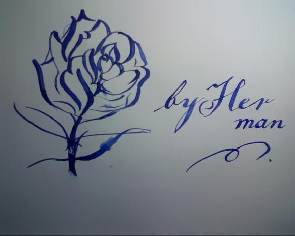 玫瑰花 简笔画