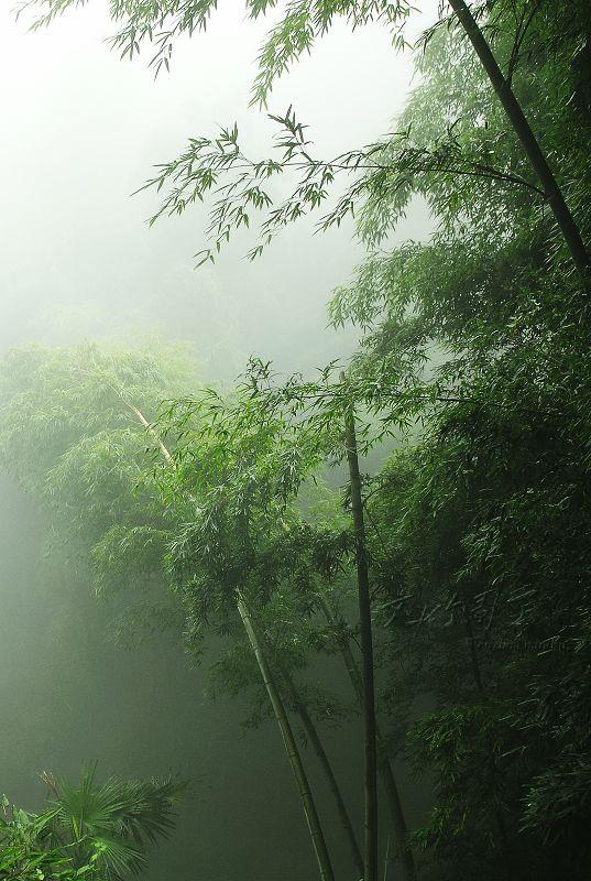 【素材】古风风景图片图片