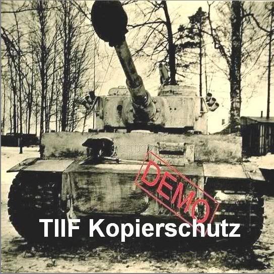 英雄的史诗——斯大林格勒保卫战(下)图片