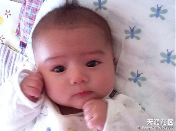 在天涯上看到的,普通人家的男宝宝。要不是楼主说