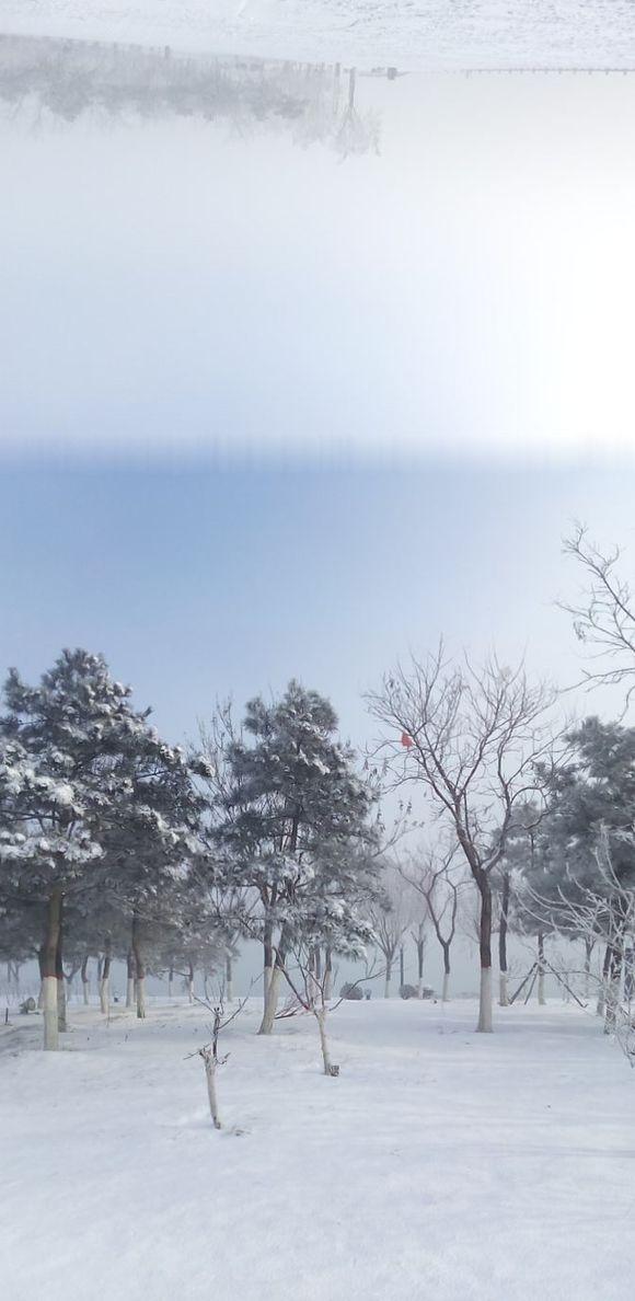 曹妃甸雪景全景拍摄图片
