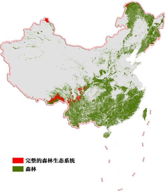 中国森林面积大幅增加图片