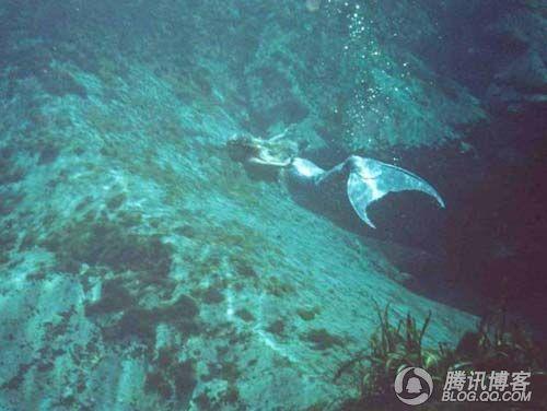 世界上到底有没有美人鱼 世界未解之谜吧 百度贴吧 高清图片