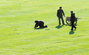 块刚刚铺好的草皮.3月16日,在这块草坪上,新赛季中国足球甲高清图片
