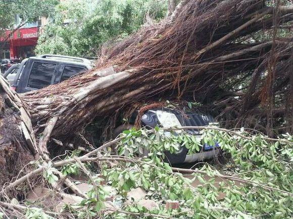 海南刮台风停水停电通