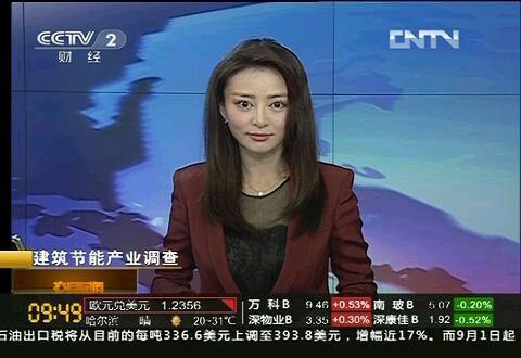 爱上女主播徐賹�_88今天在央视财经频道上看到炮姐-_-|| 50【多图】央视这个女主播长的