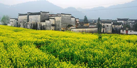 火车:黄山、景德镇、上饶、九江、南昌火车站再中转汽车至高清图片