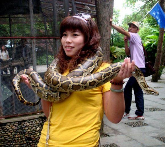 美女与蛇~~~~~~量大 请自备卫生巾