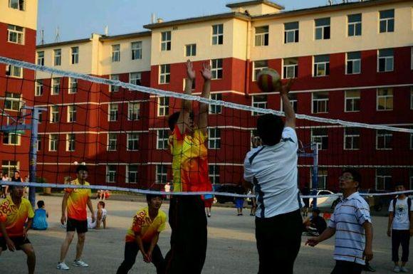 15届排球协会纳新 群号124637547 辽宁农业职业技术学院吧 百度贴吧