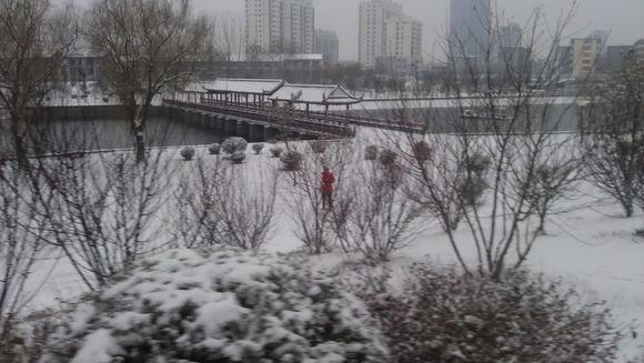 寻找雪中女孩!太美了!