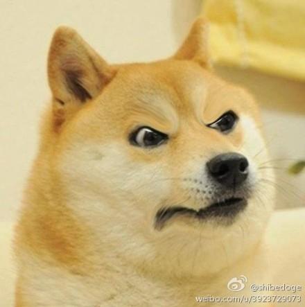 翰doge表情doge表情 doge神烦狗QQ表情图片