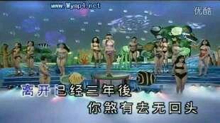 金碟豹的歌曲 十二大美女