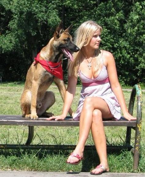 美女与野兽 汝州猛犬俱乐部吧