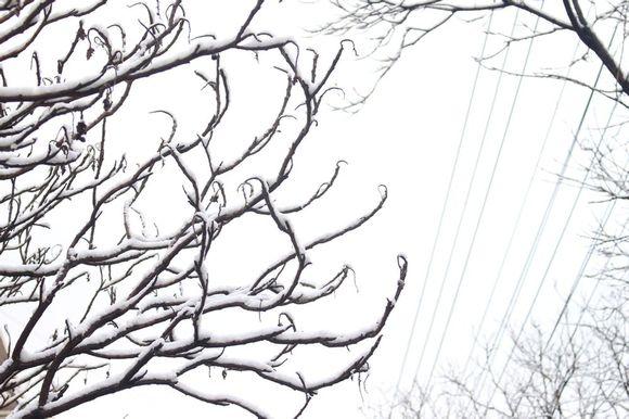下雪景色简笔画