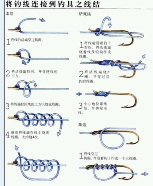 你们怎么绑鱼钩的?(511x623)-怎样绑鱼钩 绑钩器使用方法图解 一