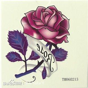 爱上野玫瑰txt下载