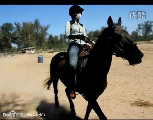 司马如佳视频骑马