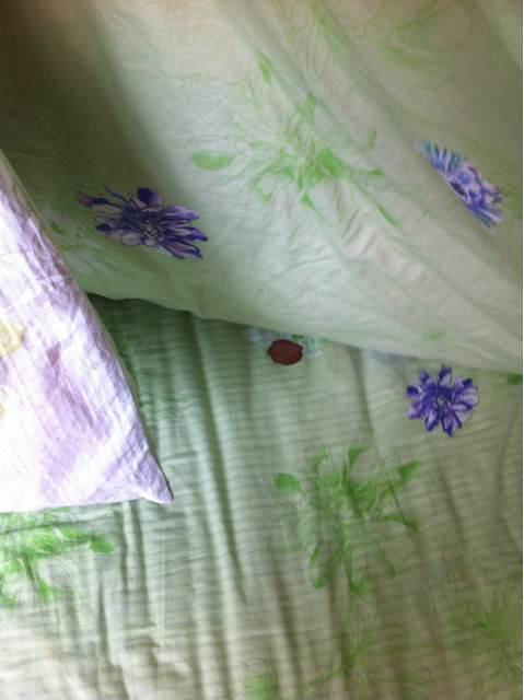 床单上的铁锈怎么去除