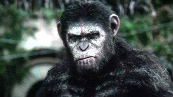 猿猴崛起迅雷