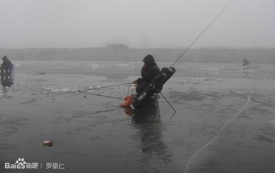 冬天池塘可以钓鱼吗
