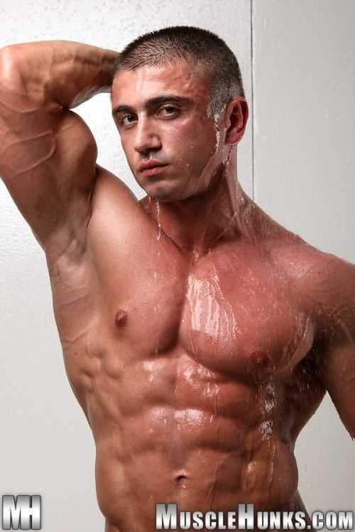 muscle man什么意思