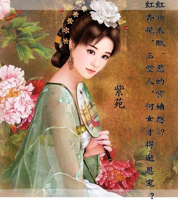 宫斗女子外貌描写
