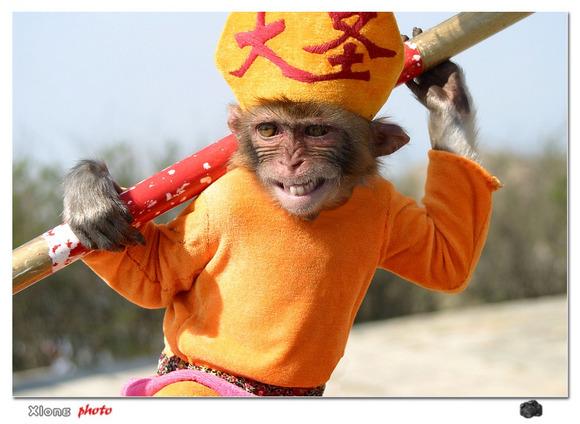 钩针玩偶图解大全猴子