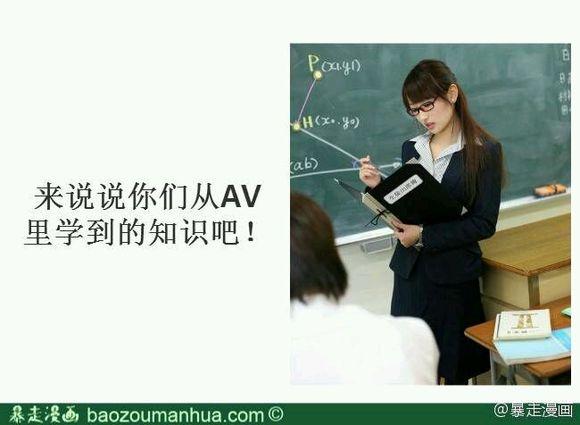 maxi-247 301 rei种子