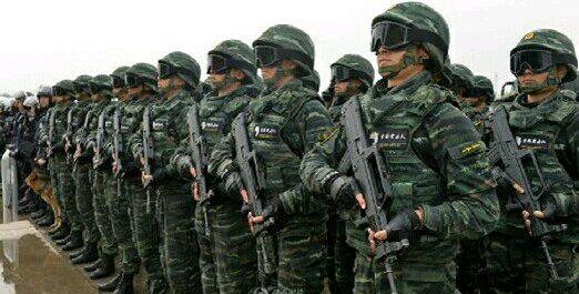 中国武警特战服装图片