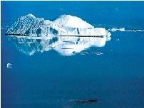 南极2号番号
