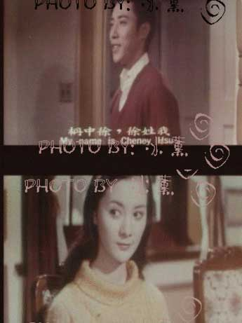琼瑶捧红的女星