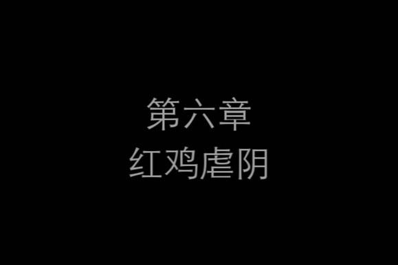 先锋影音国产普通话
