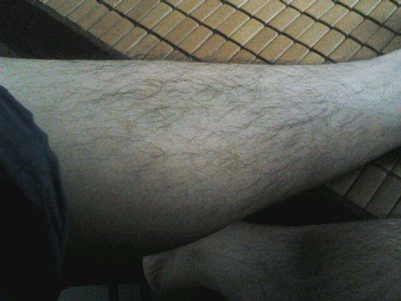 腿毛长的女生有福气吗
