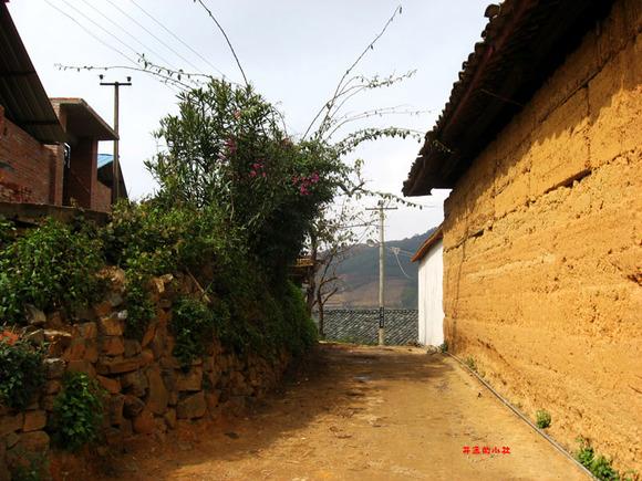 农村土屋过年图片