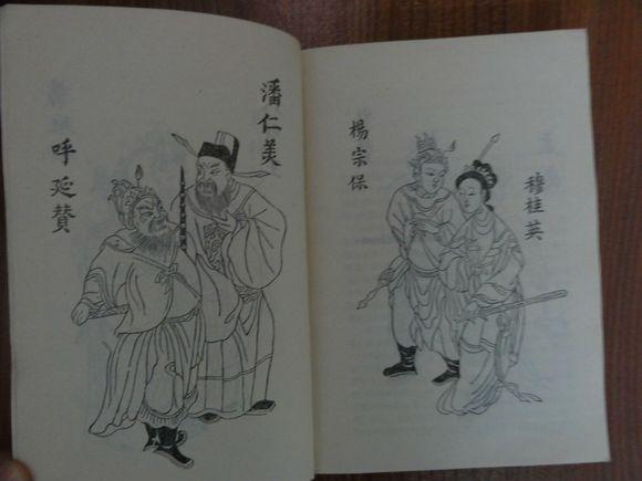 杨家将之八少风流小说