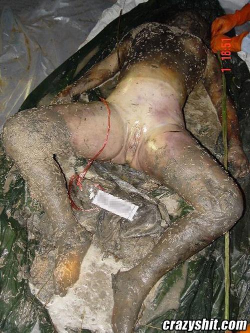 完整的女尸解剖图