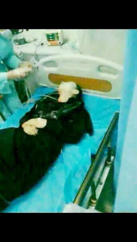 恐怖分子吊死美女图片