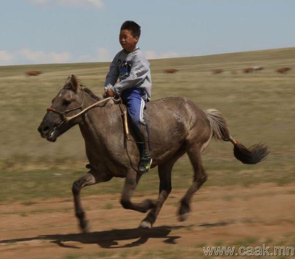 有没有人日过马