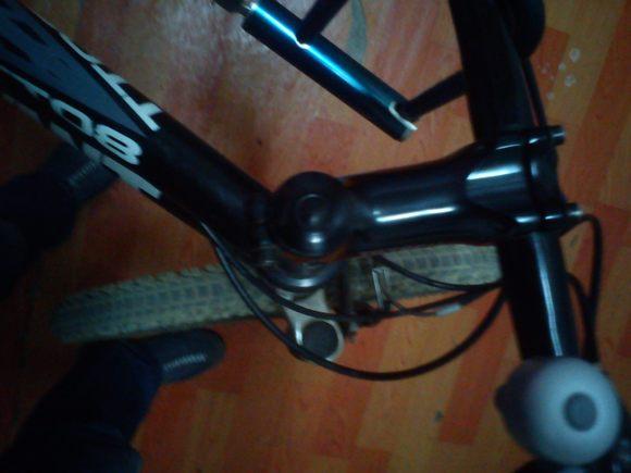 骑自行车的作文