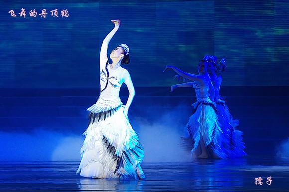 高清专场系列歌舞团17