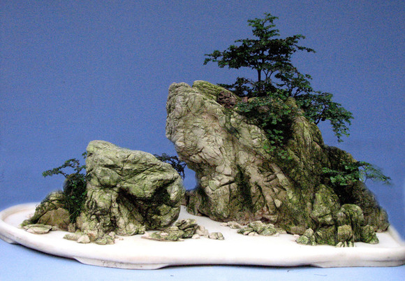 高档山石盆景图片