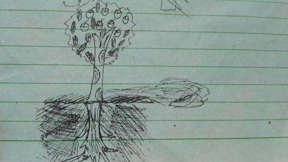 【青春风铃】画树测验