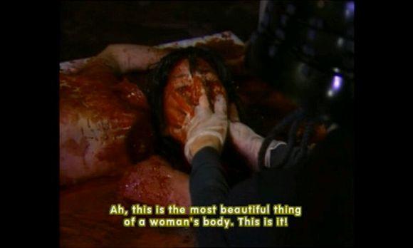豚鼠实验血肉之花