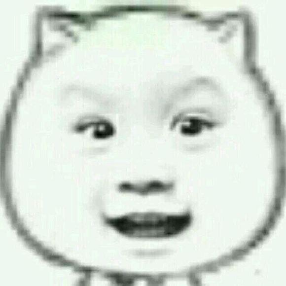 人脸猥琐猫动态表情包分享展示图片