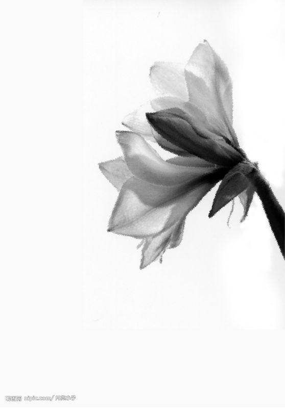【甄嬛传·美图】美图秀秀水墨画教程.照片一秒变水墨图片