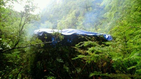 去深山老林隐居的一次实践探索图片