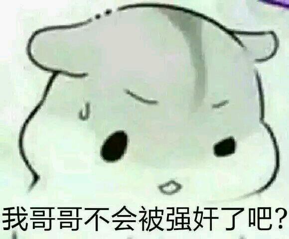 【表情包- 160731- 资源】求灰白仓鼠表情包的哥哥图片图片
