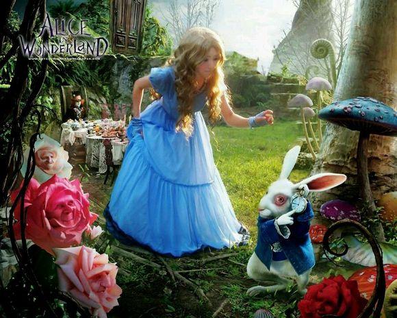 事件 微博 突然/蓝裙子的爱丽丝